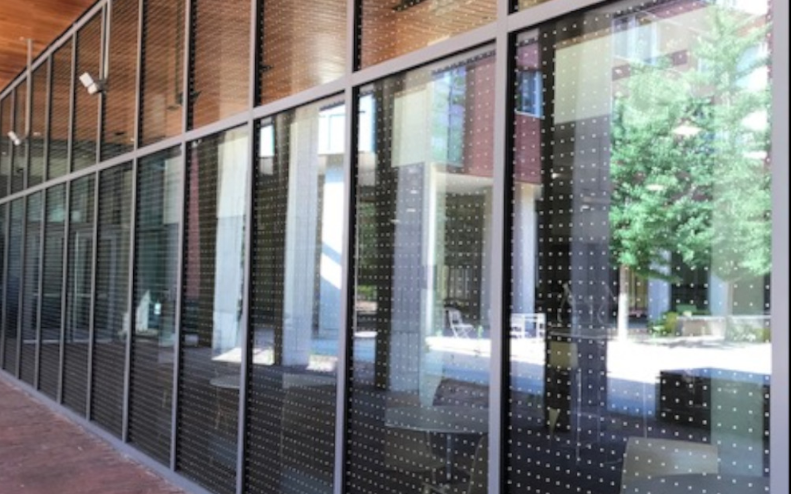 Bird-Friendly Buildings at Penn
