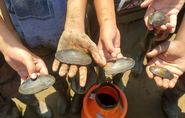 """The """"Mussel"""" Behind the Delaware River Watershed's Clean Water"""