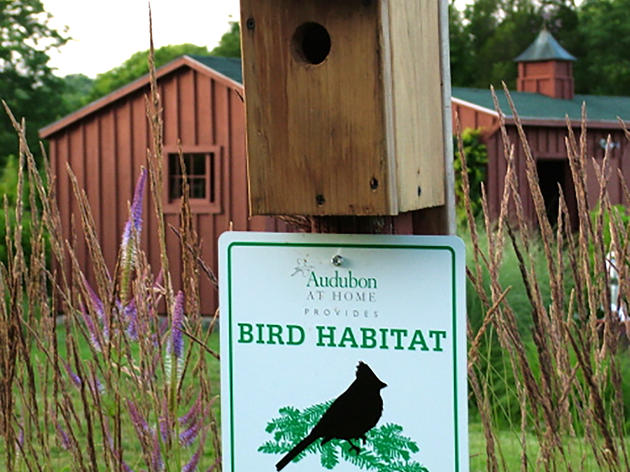 Bird Habitat Recognition Program