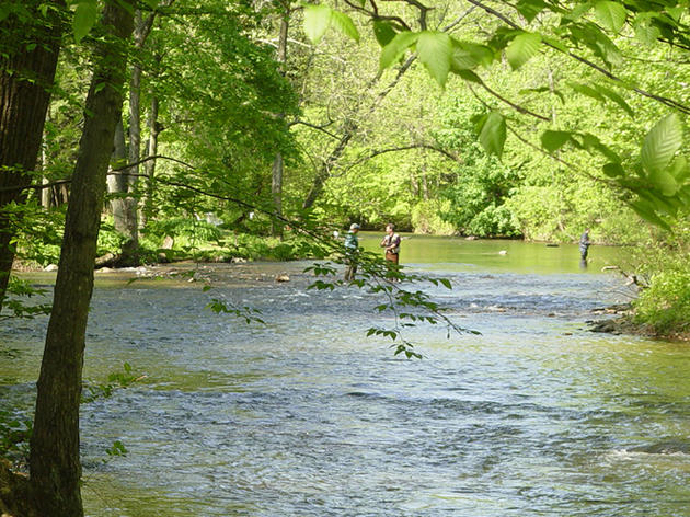 Planning Strategies and Tools that Preserve and Enhance Community Freshwater Resources