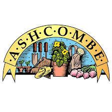 Ashcombe
