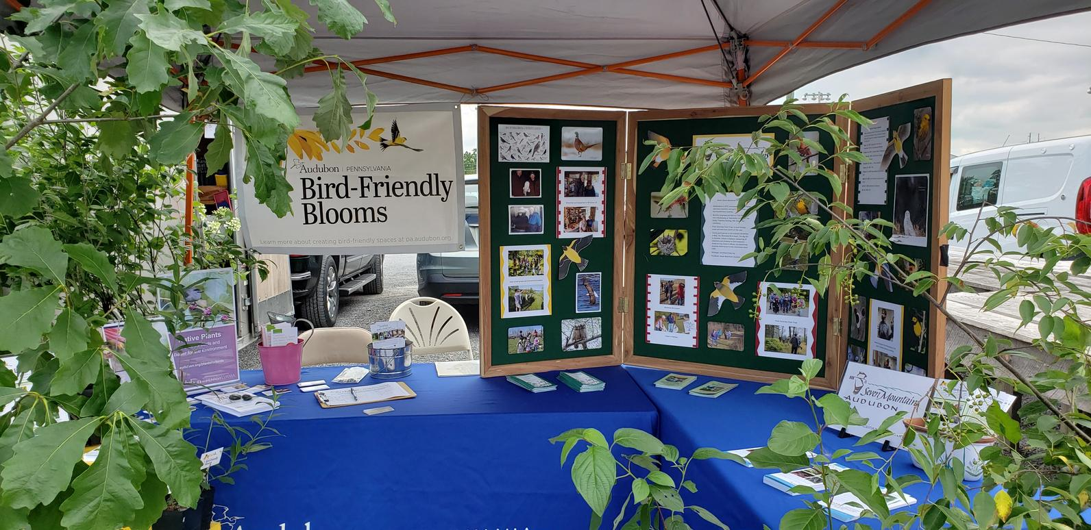 Bird-Friendly Blooms Table