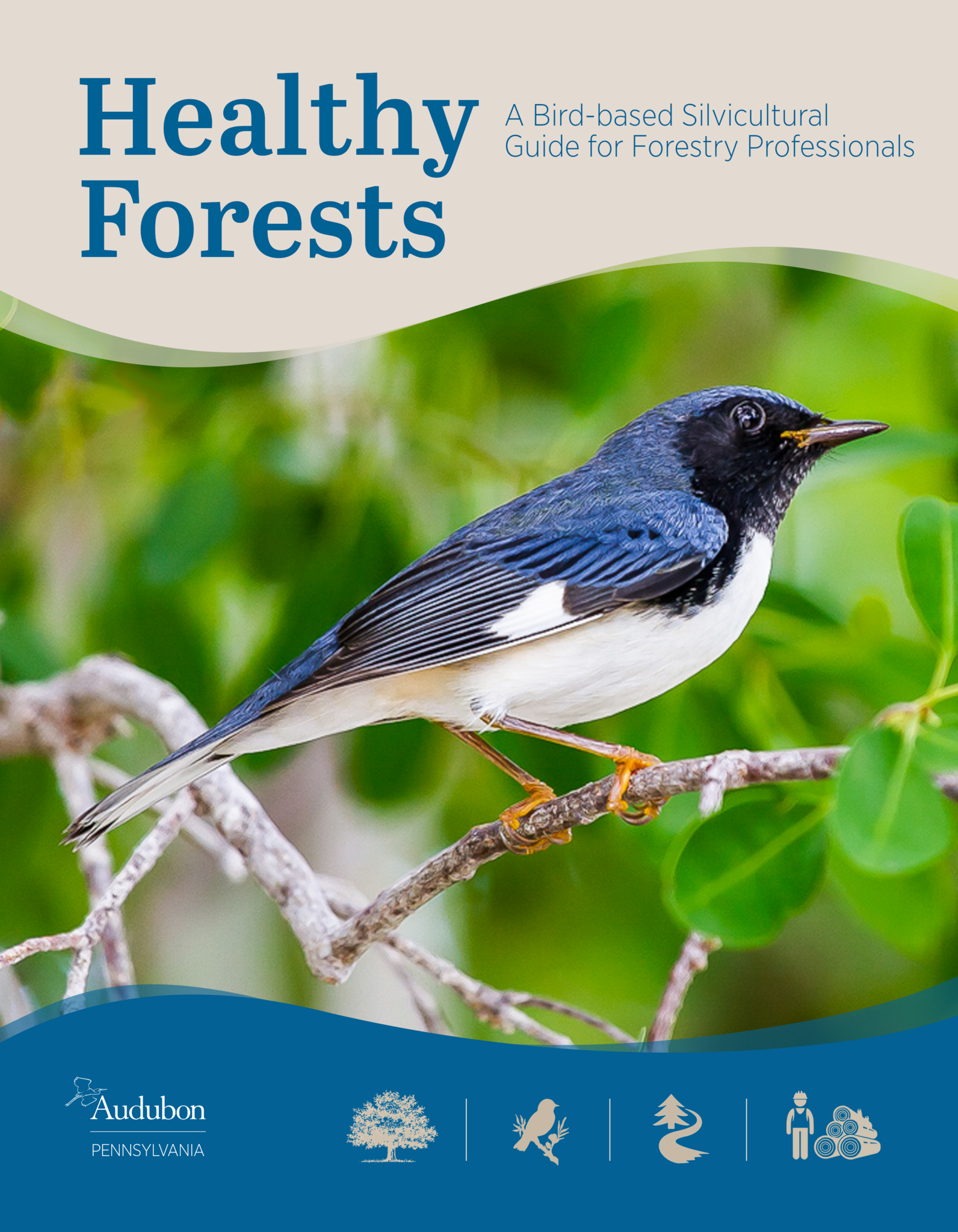 Healthy Forests Guide